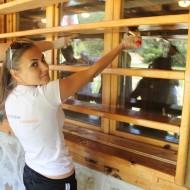 Над 80 стажанти на VIVACOM в доброволческа акция на Витоша