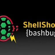Щетите една седмица след Shellshock