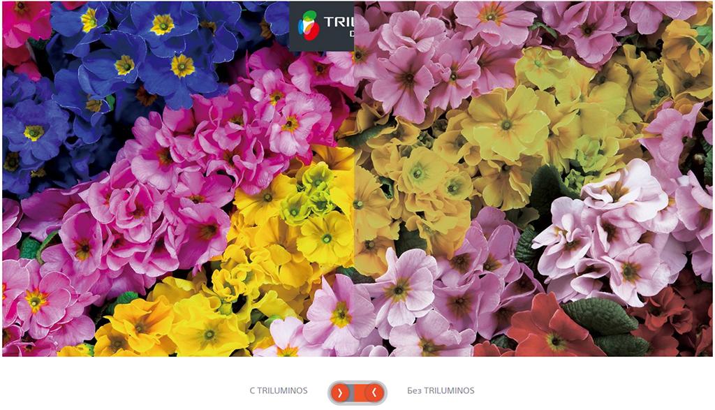 Sony-x9305c-TRILUMINOS
