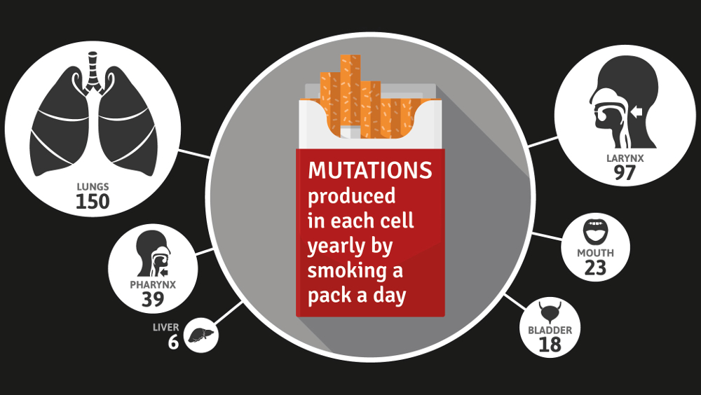 cell-mutations-from-smoking-study