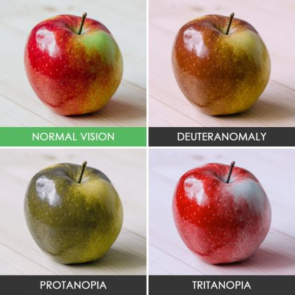 different-types-color-blindness-photos-1