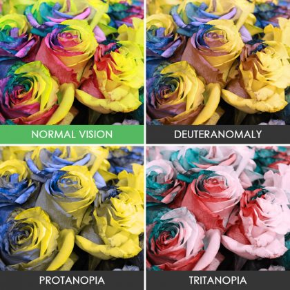 different-types-color-blindness-photos-4