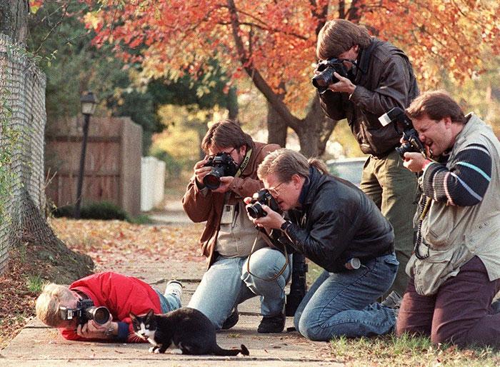 Crazy Photographers 8