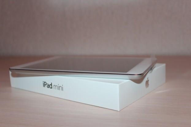iPad Mini / Deluxe