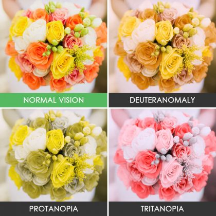 different-types-color-blindness-photos-3