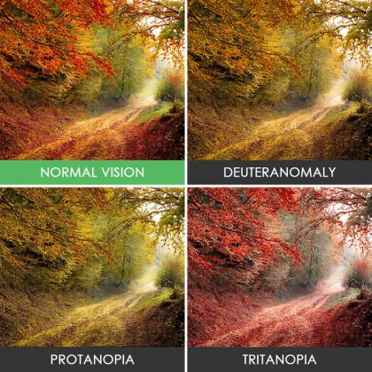 different-types-color-blindness-photos
