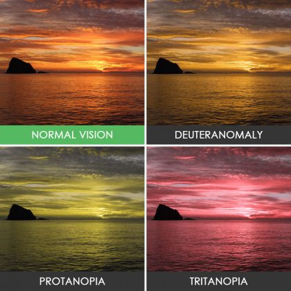 different-types-color-blindness-photos-7
