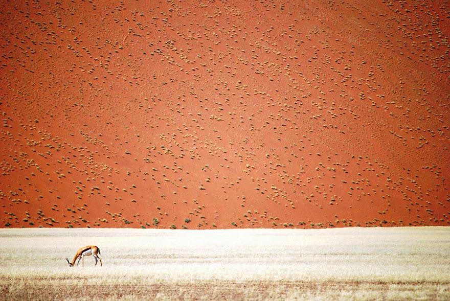 Namibia | Снимка: Doris Landertinger / National Geographic