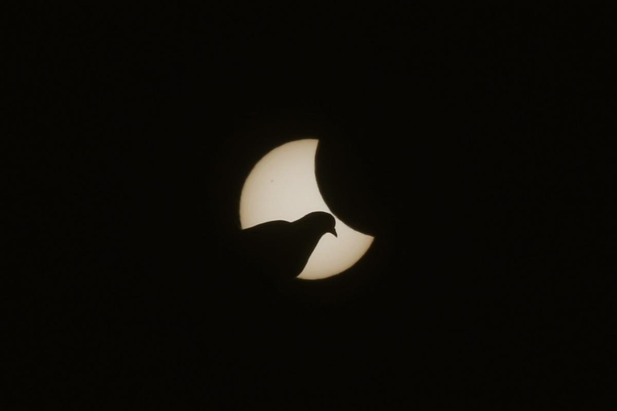 solar-eclipse-march-2015-9